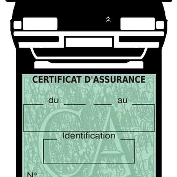 Pochette étui assurance voiture Mini-Cooper S BMW vignette verte