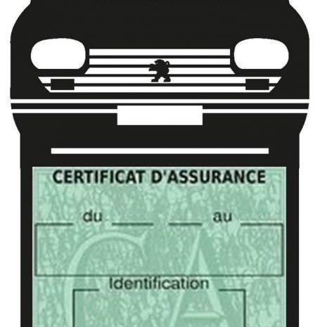 Etui porte assurance auto Peugeot 204